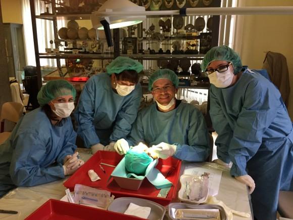 Kirurg og sykepleiere studerer anatomi