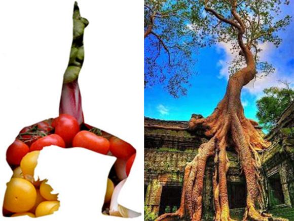 Detox yoga og Angkor Vat foto: pinterest.com